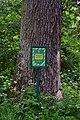 Kivertsi Volynska-Quercus-patriarch nature monument-guard board.jpg