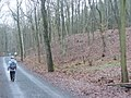 Kladow - Beim Kolonie Breitehorn (By the Breitehorn Holiday Park) - geo.hlipp.de - 31728.jpg