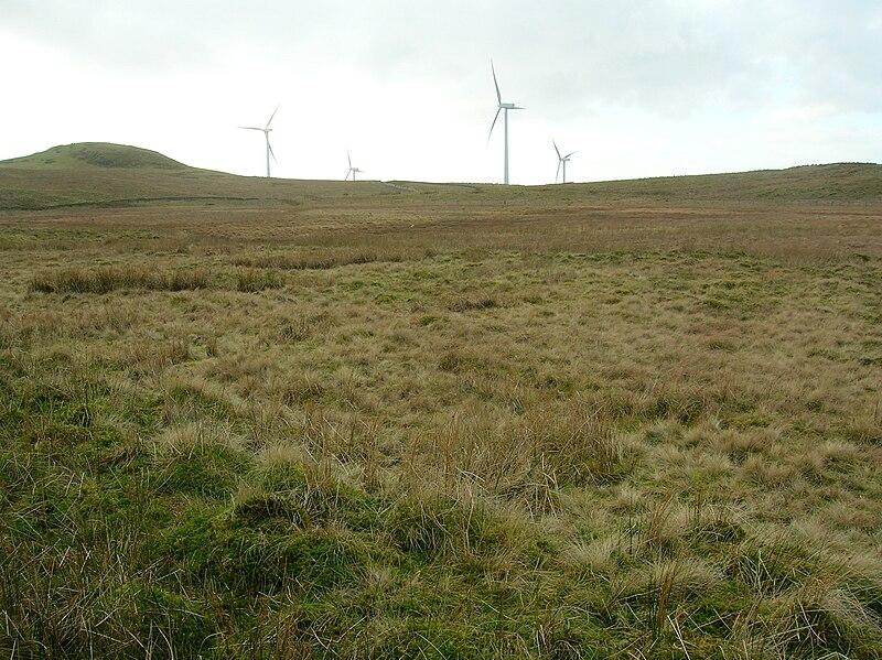 File:Knockewart Loch Site, Southern end.JPG