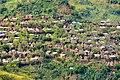 Konso village (4) (28869988190).jpg
