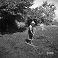 Kosci z Oštrca na Košenicah v Gorjancih 1956 (8).jpg