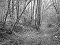 Krasnystaw, Poland - panoramio (7).jpg