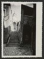 L'escalier des cordeliers (34331852710).jpg