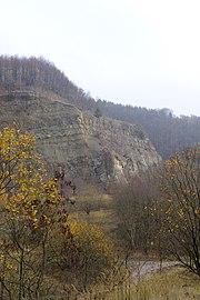 LSG HM 00026 Hessisch Oldendorfer Wesertal Nord - bei Pötzen - Steinbruch am Hohenacken (34).jpg