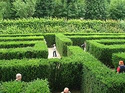 Labyrinth, Schönbrunn garden.jpg
