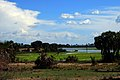 Lagoon at Impala Camp, Selous.jpg
