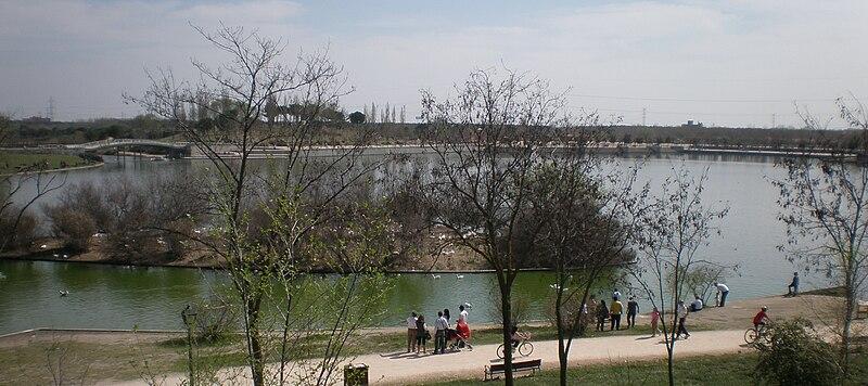 Lago de Polvoranca (Comunidad de Madrid) - Hay Pesca!