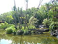 Lake, Asia (Disney's Animal Kingdom).JPG