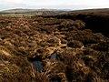 Land Drain - geograph.org.uk - 368361.jpg