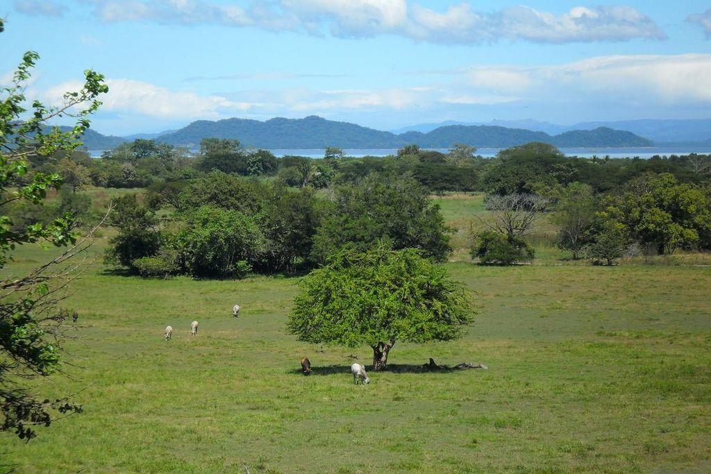 Nicoya, Costa Rica - modré zóny