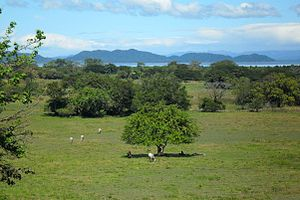 Nicoya Peninsula - A landscape over the south-east part of the Nicoya Peninsula
