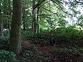Landschaftsschutzgebiet Warmenau-Ufer LSG OS 00019 Datei 20.jpg