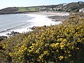 Langland Bay and golf course - geograph.org.uk - 461037.jpg