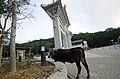 Lantau Island - panoramio (3).jpg
