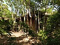 Late 1900's Wood Storage Facility Ruins - panoramio.jpg
