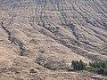 Leacann Beinn Dòrain - geograph.org.uk - 775839.jpg