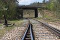 Ligne de Bourron-Marlotte à Malesherbes - 2013-04-21 - IMG 9431.jpg