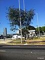 Limão, São Paulo, Brasil - panoramio (4).jpg