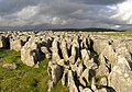 Limestone pavement -near Malham, Yorkshire, England-26Oct2004 (2).jpg