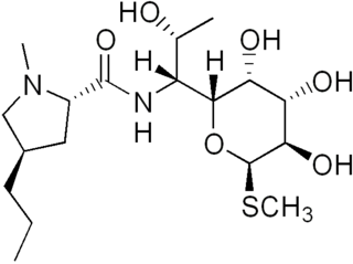 Lincosamides group of chemical compounds