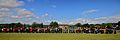 Line of tractors at Great Whelnetham Classic Car and Tractor Show.jpg