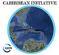 Logo Caribbean Initiative.jpg