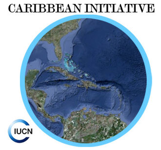 Caribbean Initiative - Image: Logo Caribbean Initiative