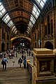 London - Cromwell Road - Natural History Museum 1881 by Alfred Waterhouse - Central Hall - View South from Charles Darwin's Platform.jpg