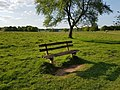 Long shot of the bench (OpenBenches 6083-1).jpg