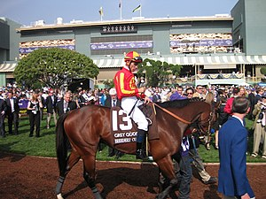 Garrett K. Gomez - On Lookin At Lucky at the 2009 Breeder's Cup Juvenile