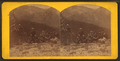 Looking into Cottonwoood Kanyon (Canyon), from Mount Emma, from Robert N. Dennis collection of stereoscopic views.png