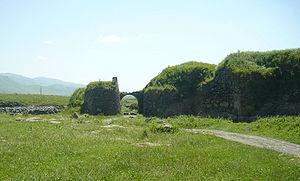Lori Fortress - 275 px