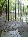Lots of water here on hole 12 - panoramio.jpg