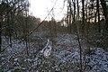 Lurup - frosen Scheetplatsgraven2.jpg