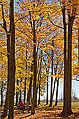 Luskville Falls Picnic Grounds, Gatineau Park (10396087016).jpg