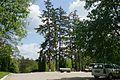 MD.ST.Lozova - Codru scientific reserve (parking lot) - may 2017 - 63.jpg