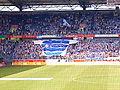 MSV-Arena Riesentrikot.JPG