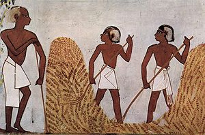Big History - Conventional history often begins with the development of agriculture in civilizations such as Ancient Egypt.