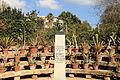 Malta - Attard - San Anton Gardens - George VI 02 ies.jpg
