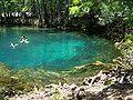 Manatee Springs State Park Florida springs04.jpg