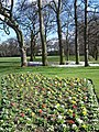 Manston Park - geograph.org.uk - 356438.jpg