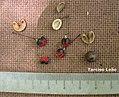 Maprounea guianensis, pinga-orvalho - Flickr - Tarciso Leão (3).jpg