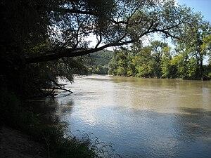 Mureș Floodplain Natural Park - Mureș River