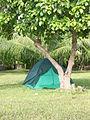 Marshall Islands PICT1417 (4777248662).jpg