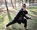 Master Zhou Jing Xuan demonstrating Pigua Zhang's Dan Pi Zhang, HaYarkon Park, Tel-Aviv, 2010.jpg