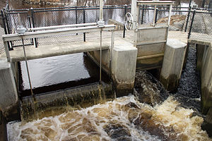 Mattapoisett River - The Lower Herring Weir