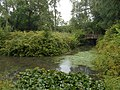 Medieval moated site, South Park Farm, Grayswood, Surrey 02.jpg