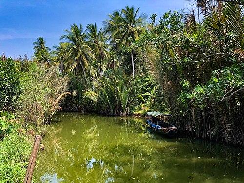Mekong Delta Ham Luong River.jpg