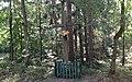 Memorial cross. Bike trail between Grabacz and Kopaniarze - panoramio.jpg