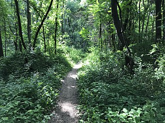 Mercer County Park - A mountain bike trail in the Park.
